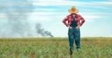 Держпідтримка фермерів: щоб застрахувати 10 млн га, в бюджет потрібно закласти 2 млрд грн