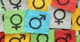 Gender — секретный ингредиент успеха бизнеса