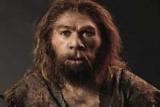Неандертальцы убили холод-ученые