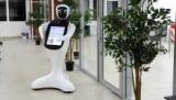 Зоопарк ростовском начал работать робот-кассир
