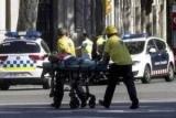 Полиция Каталонии рассказала о происхождении задержанных в связи с терактом
